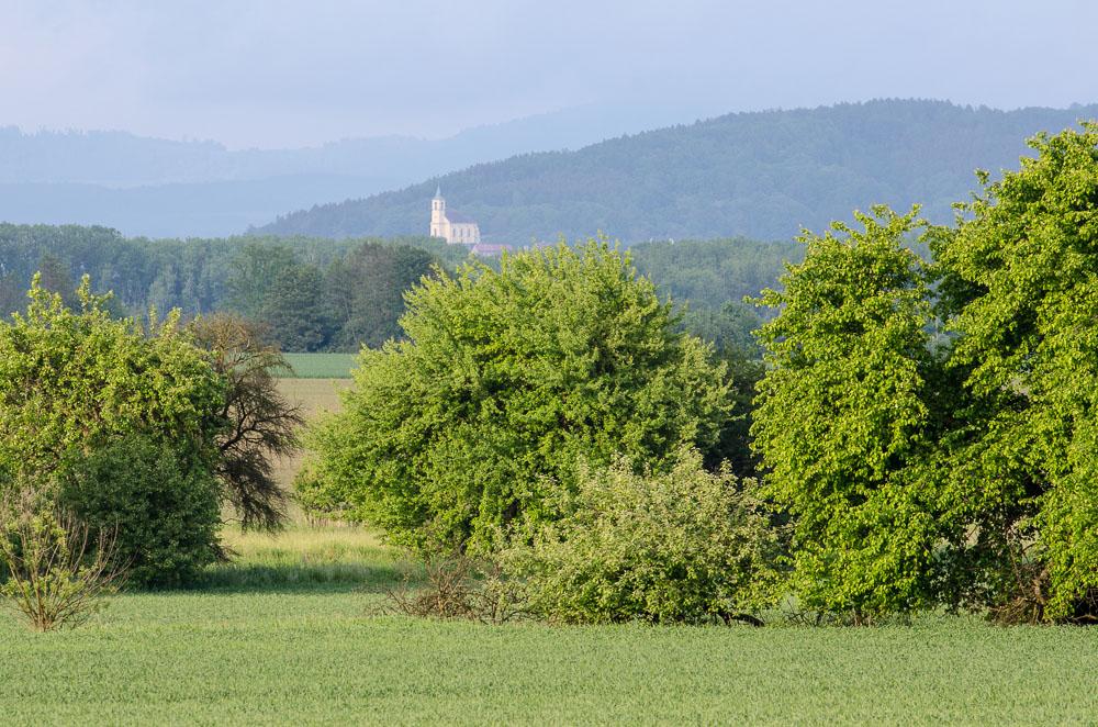 Všeňský kostel - pohled od Olšiny