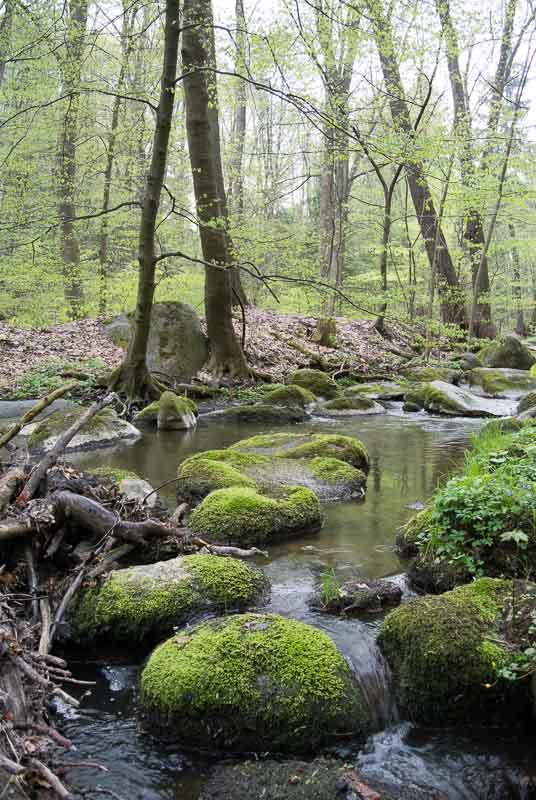 Jevanský potok