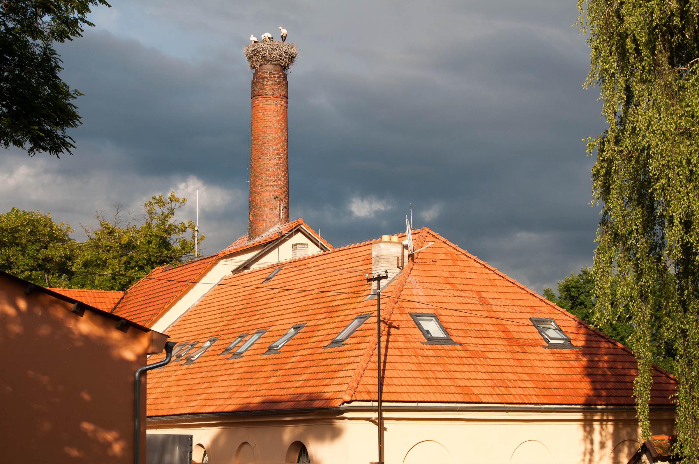 """Čapí hnízdo na komíně. Slunce a čenné mraky v pozadí - ideálně """"černé"""" světlo."""