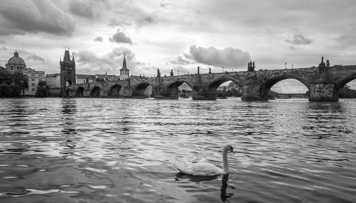 Fotografujeme v Praze – Karlův most z Kampy