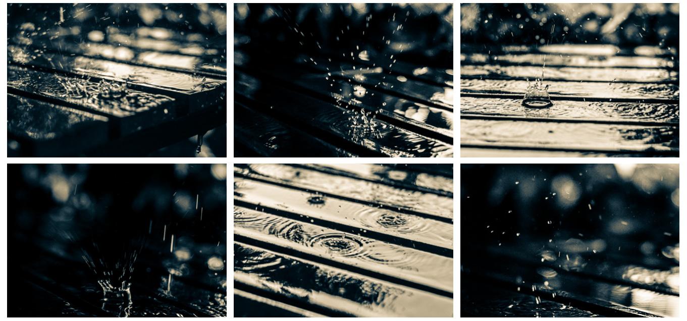 Fotografování v dešti a po dešti