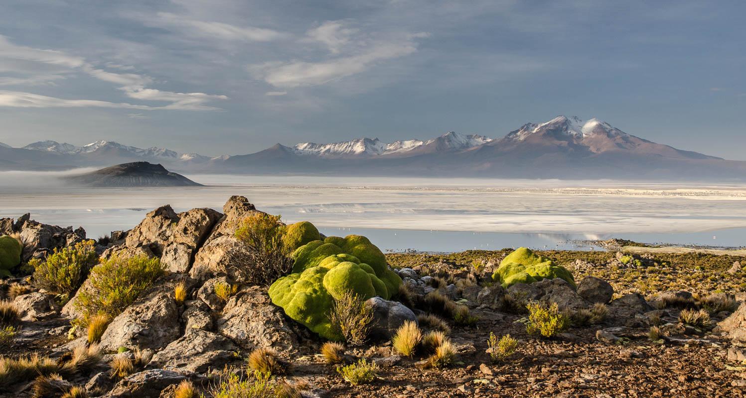 Solná pláň Salar de Surire – jedno z mnoha snových míst chilského Altiplana