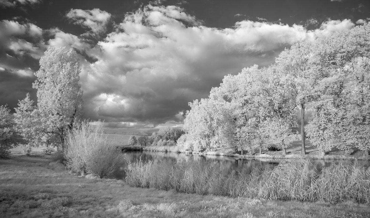 Vesecký rybník (infračervená  fotografie)