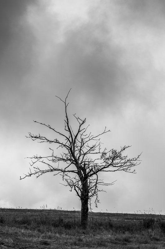 Smutne-Krusne-hory_10