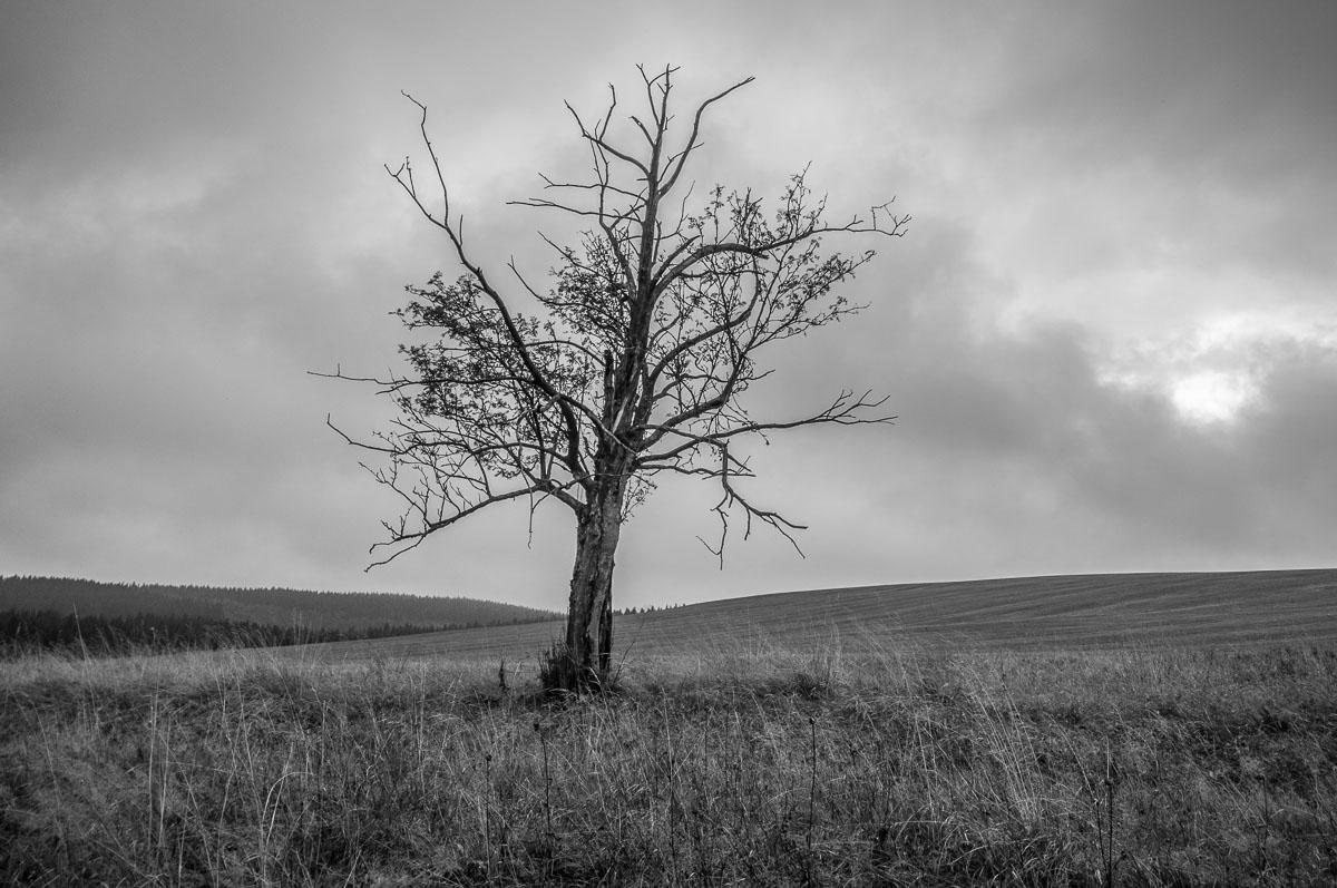 Smutne-Krusne-hory_19