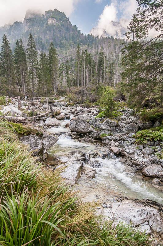 Studený potok.