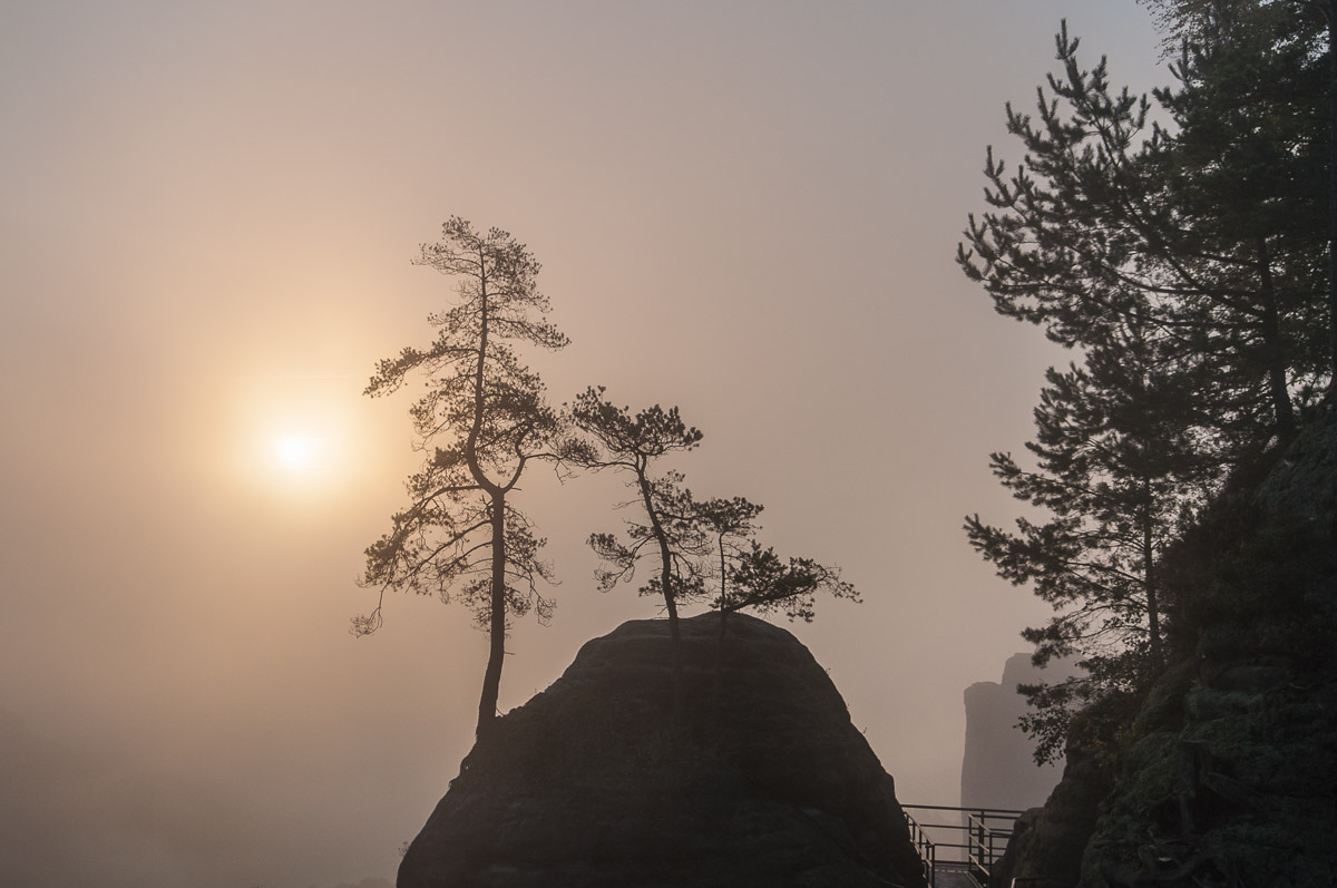 Saské Švýcarsko: Východ slunce nad Bastei