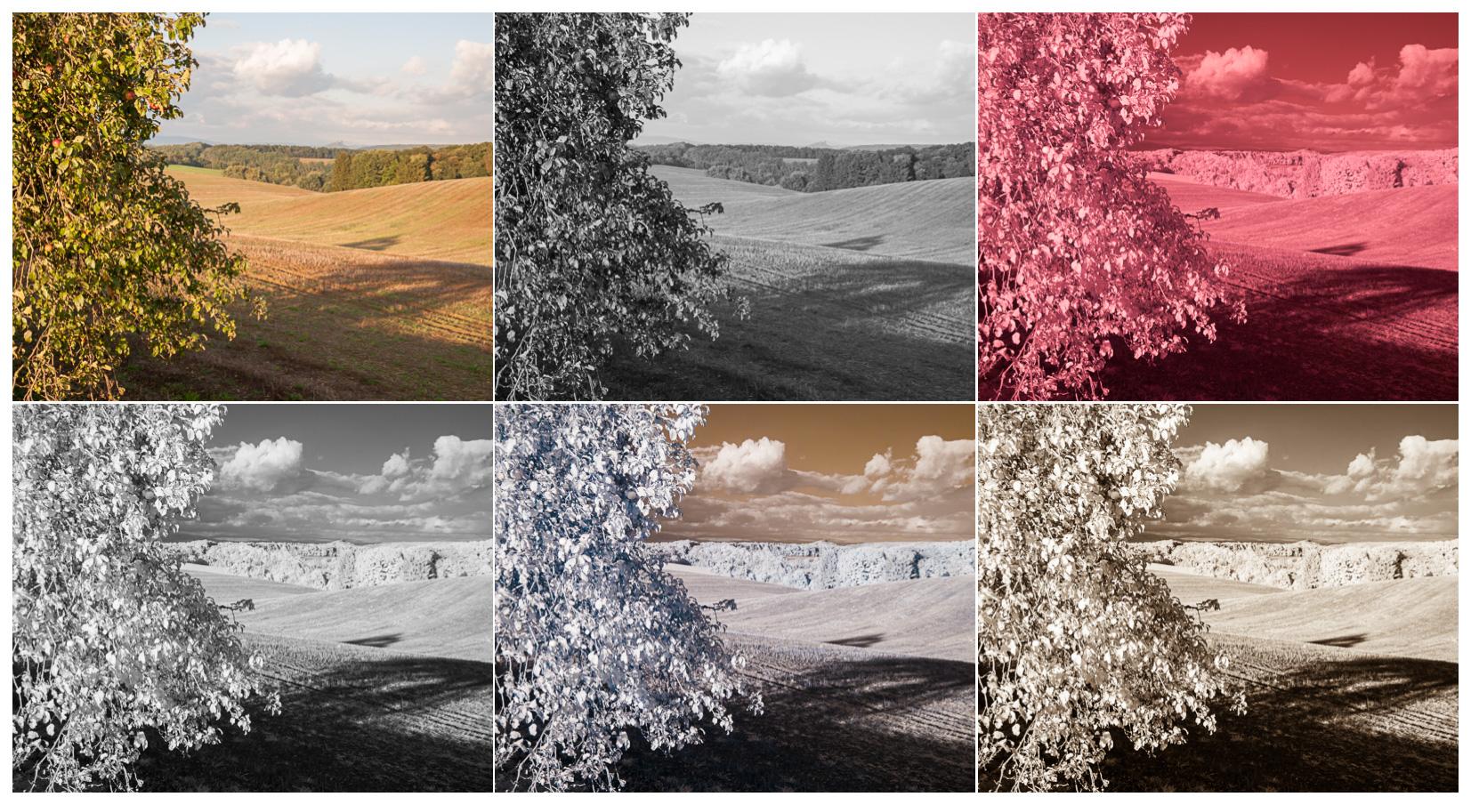 Není BW, jako BW, aneb infračervená versus klasická fotografie