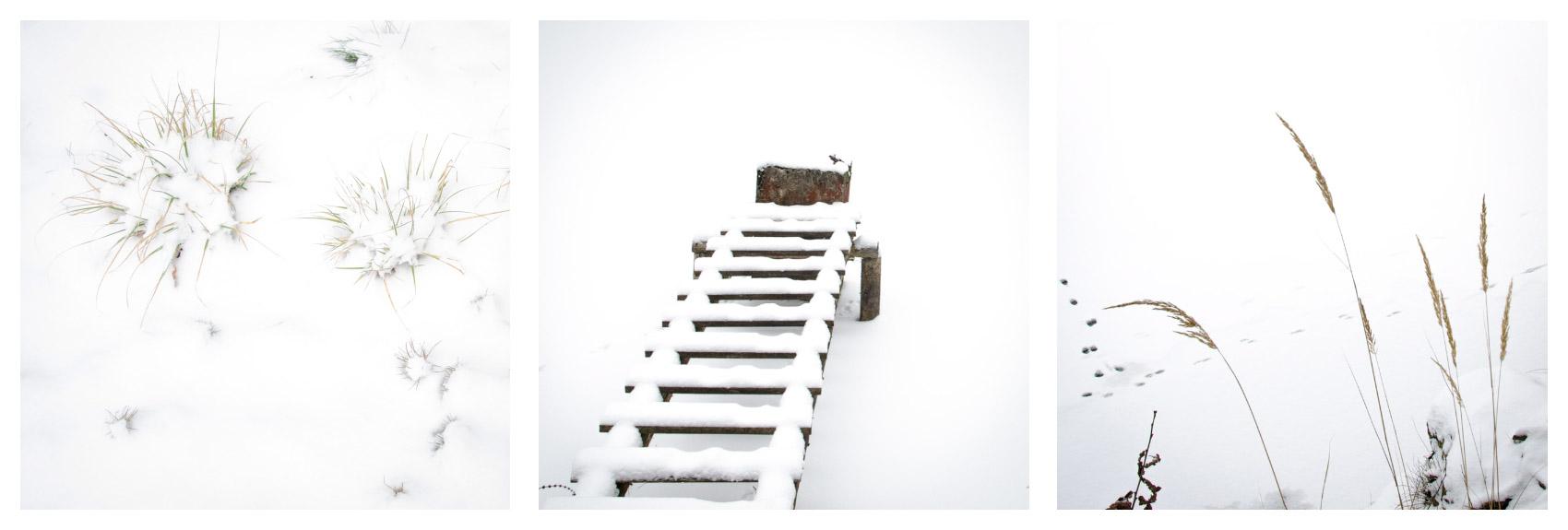 Snehovy-1b