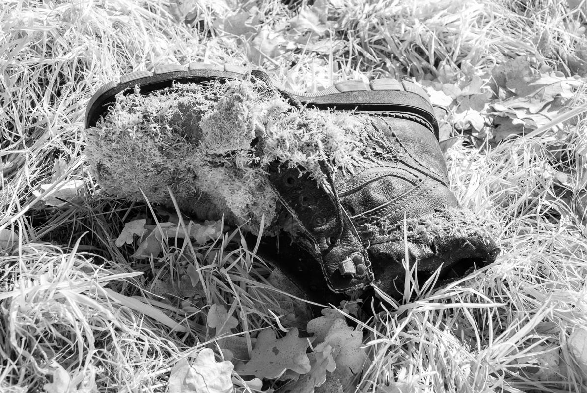Ztracená bota