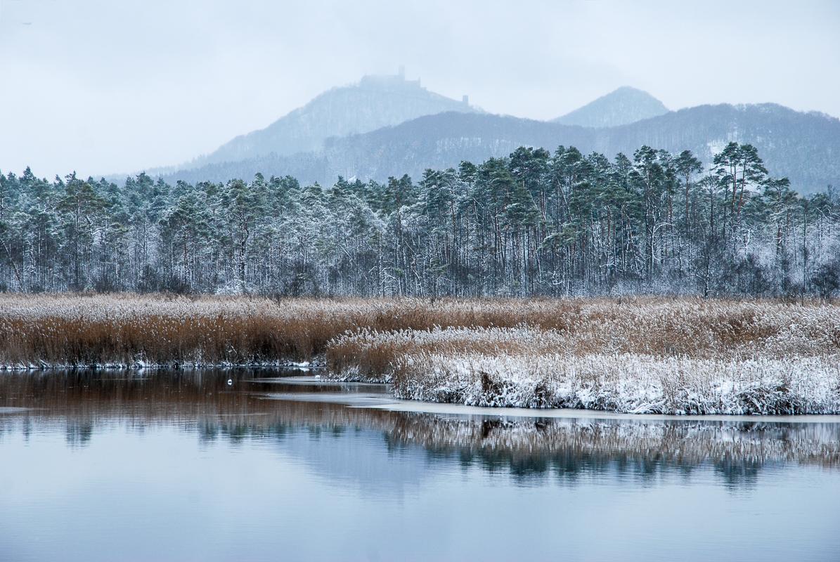 Pohled na Bezděz od rybníka Břehyně patří k mým vůbec nejoblíbenějším místům.