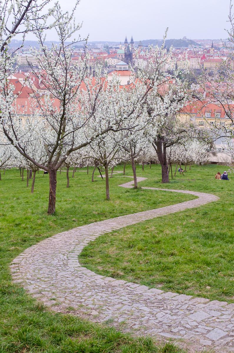 Cesta Petřínským sadem