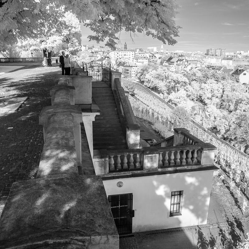 Výhled z Grébovky směrem na Vršovice