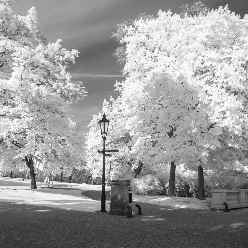 Park u vily Grébovka