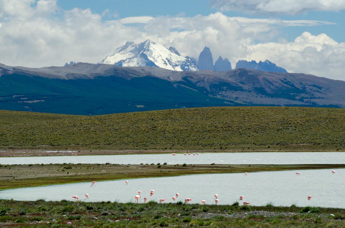 Jakési bezejmenné jezírko a v něm první plameňáci, které jsem viděl - v pozadí se rýsuje masi Tvorres del Paine.