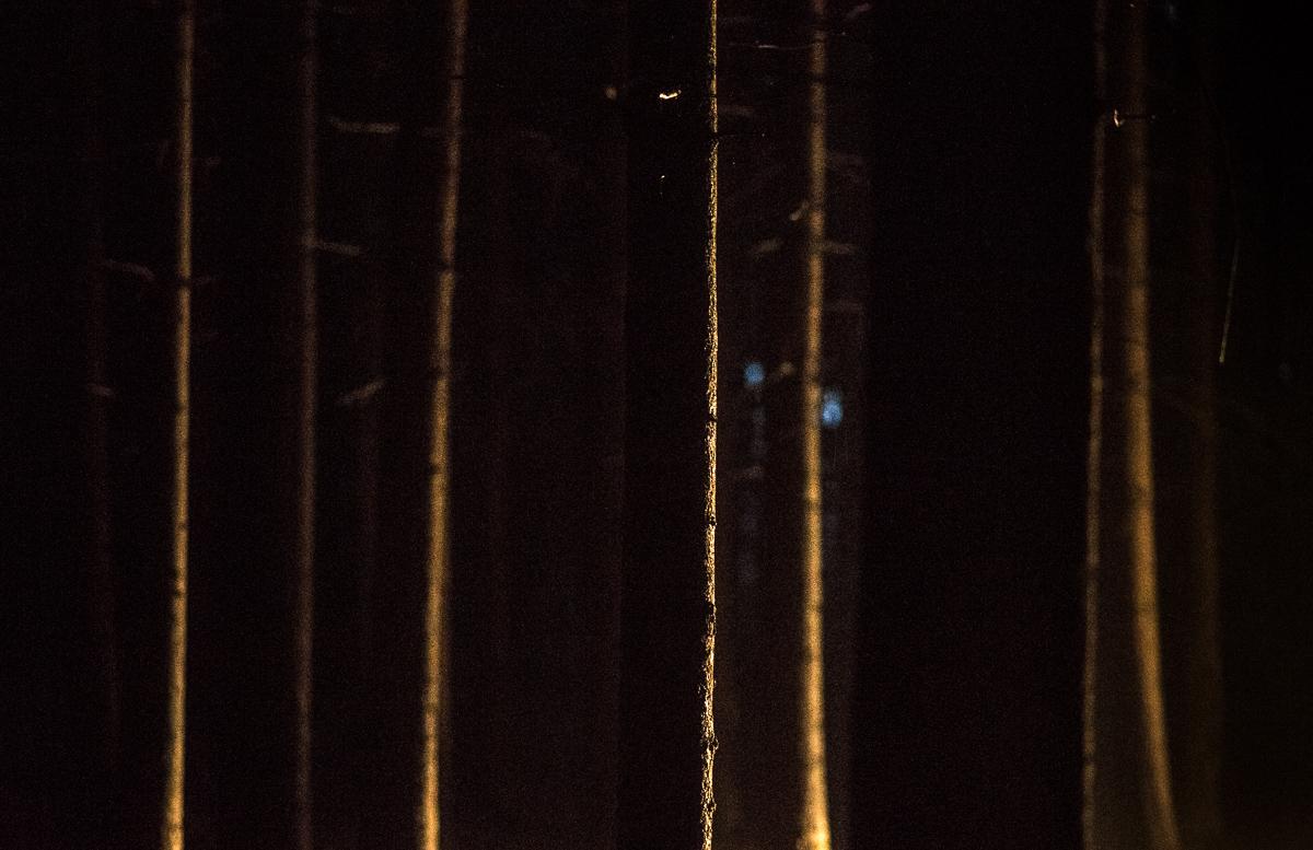 I Záběr do boku je zajímavý - světlo jen zlehka nasvěcuje hrany.