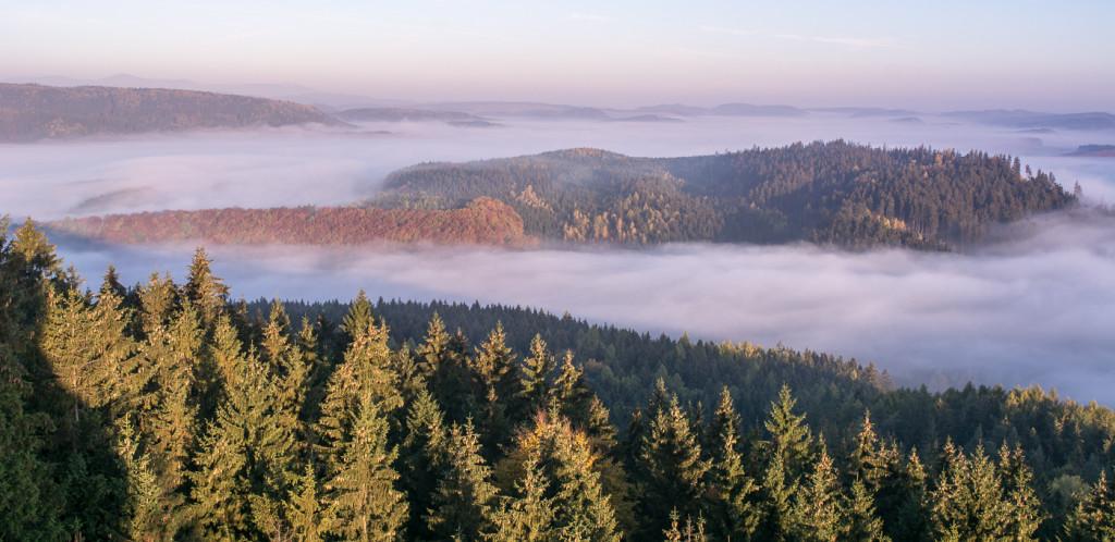 Ranni, mlha, panorama, Ostas