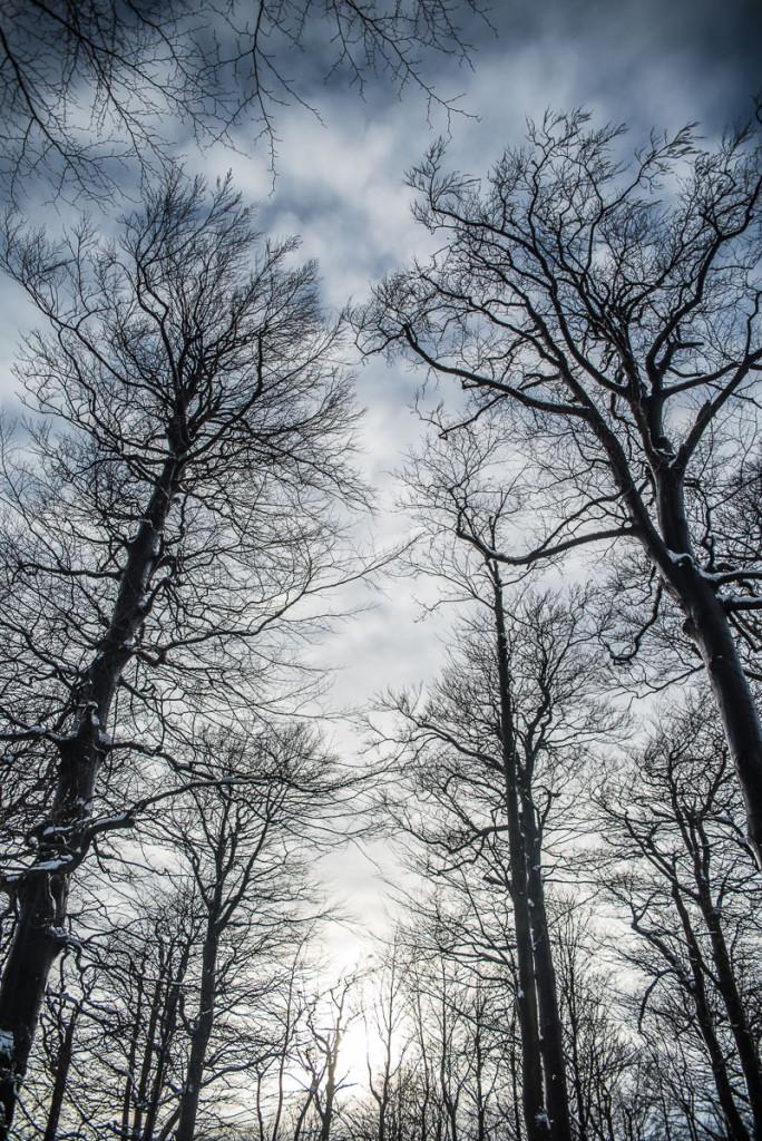 zimní Česko-Saské Švýcarsko se sněhem