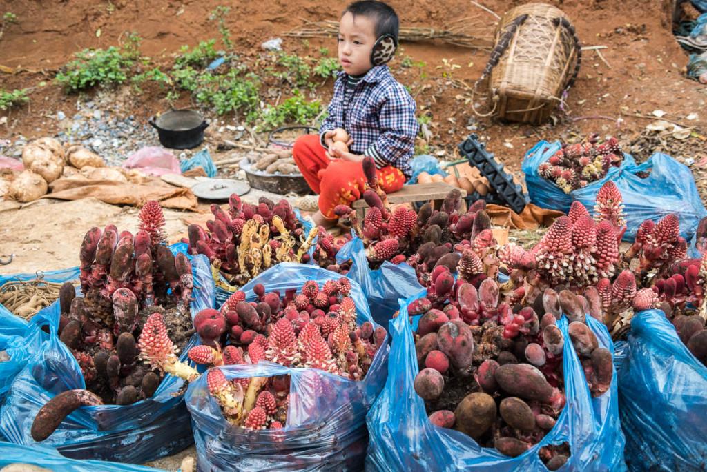 Vitenamci, život, Vietnam, Asie