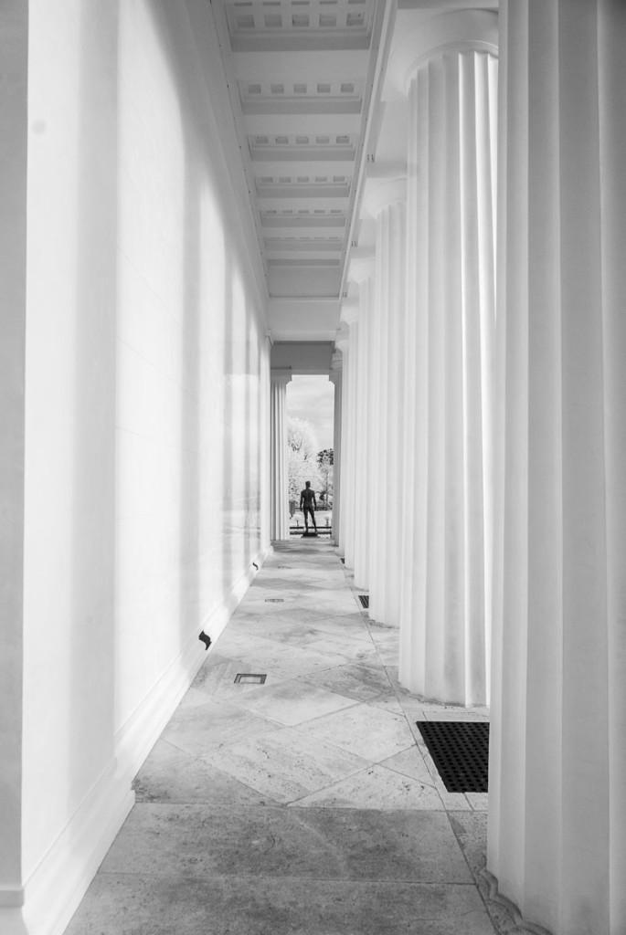 Thesus Tempel, Vídeň