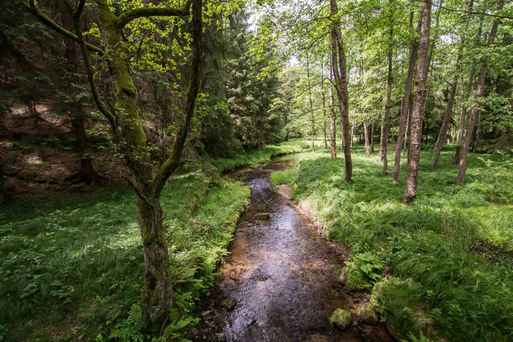 Křinice, Krnitsch, Saské Švýcarsko, Sächsische Schweiz