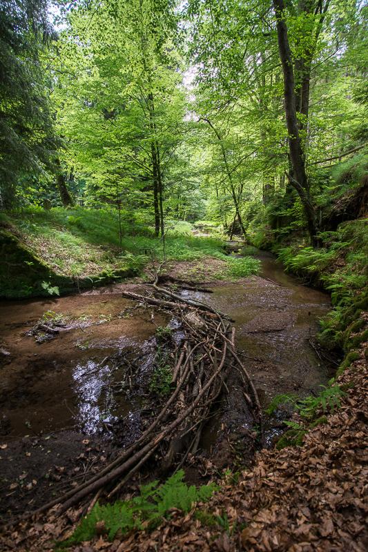 Křinice, Krnitsch, Saské Švýcarsko, Sächsische Schweiz,