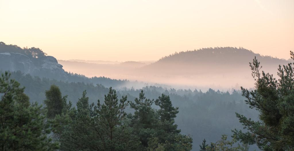Ranní mlha v Českém ráji u Zakopané