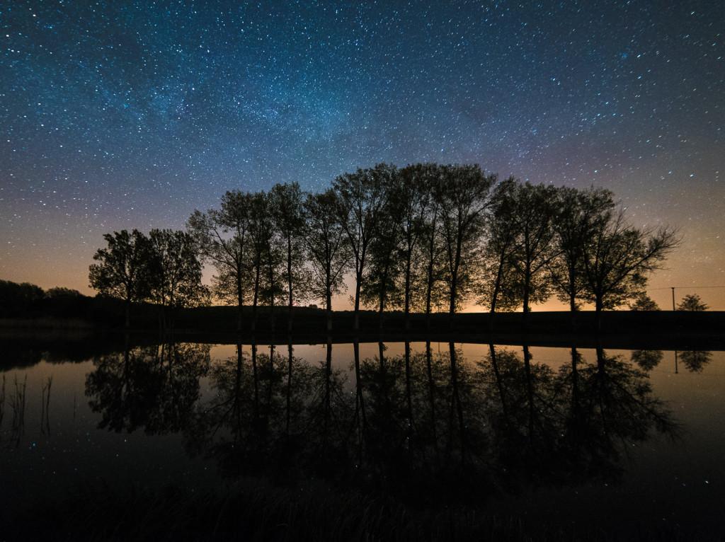 Vesecký rybník a  mléčná dráha