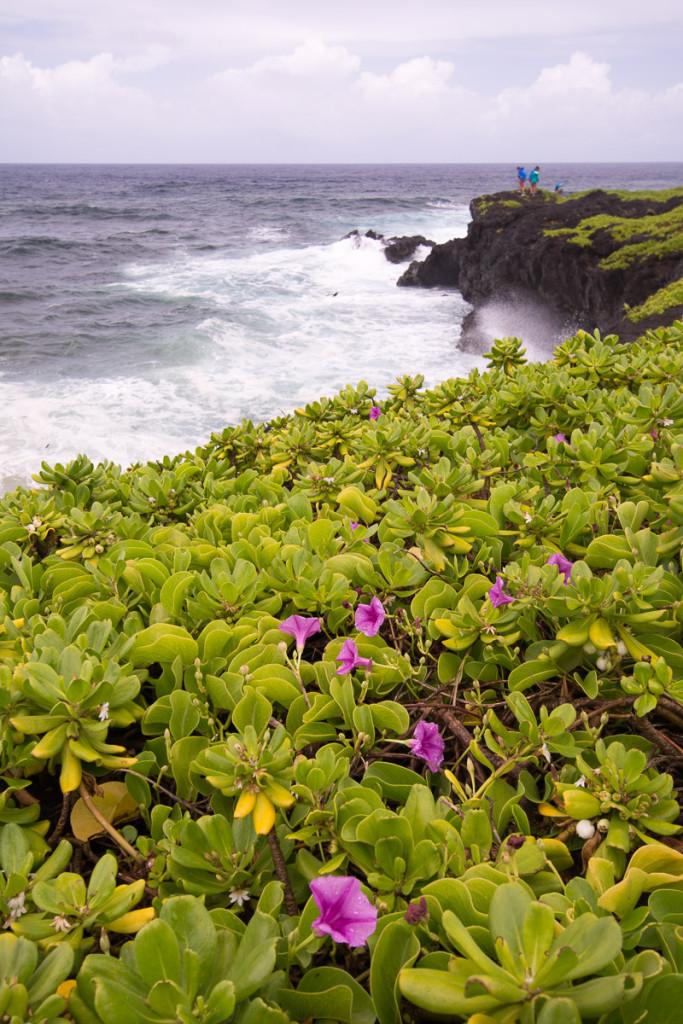 Lávové pobřeží u tzv. Kuloa Point