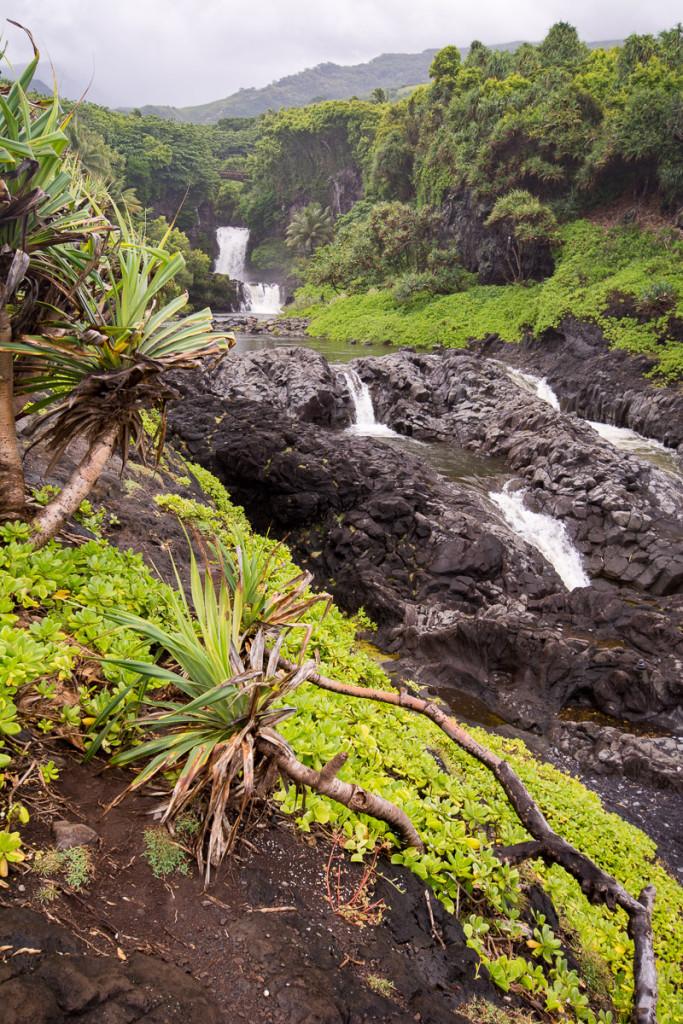 pipiwai-trail_havaj_hawaii-maui-20