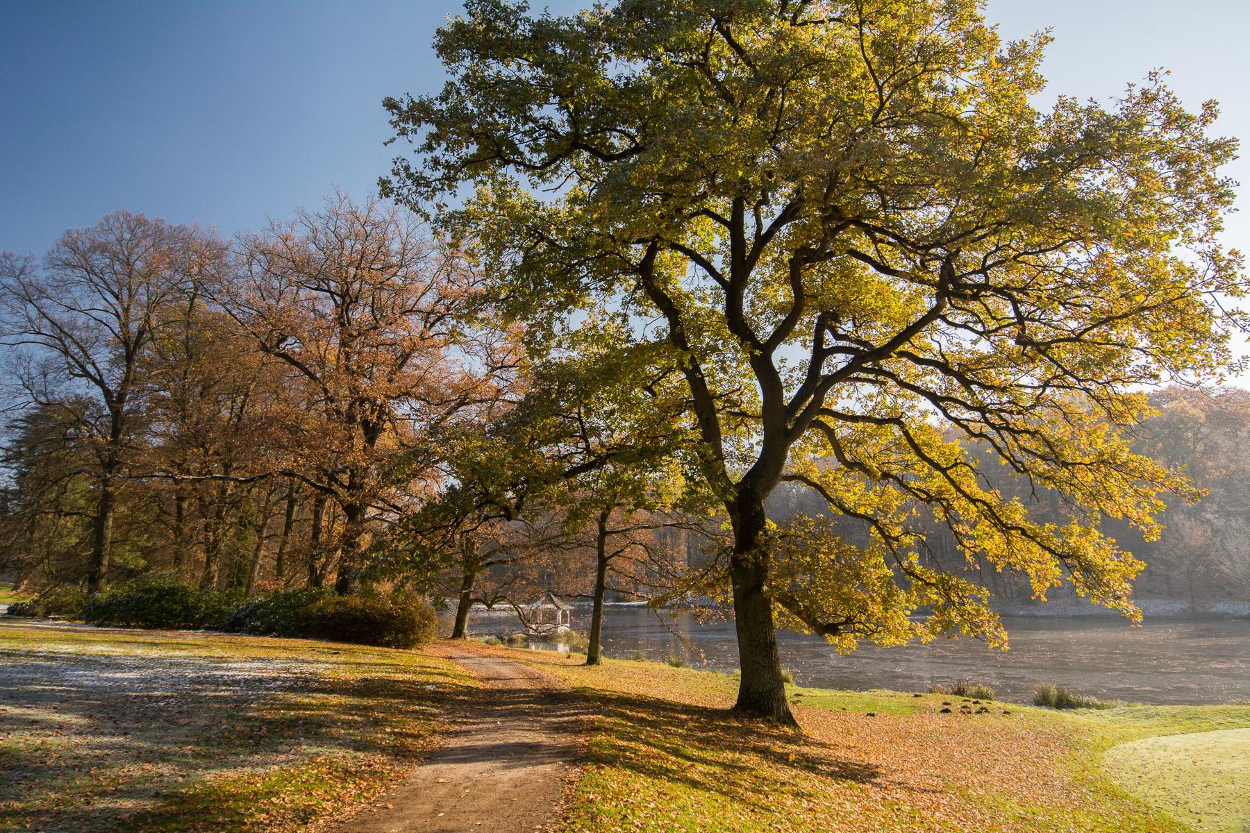 Podzimně zimní Štiřínský park