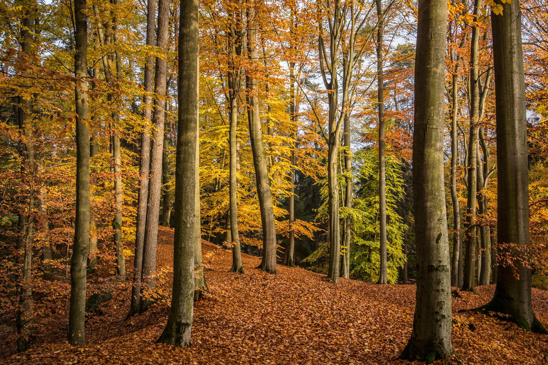 Podzimní Český ráj v aprílovém počasí