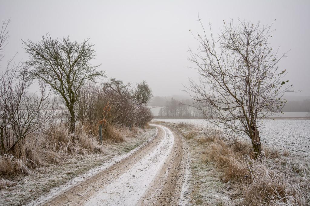 Zimní Český ráj s námrazou - cesta na Dolský mlýn