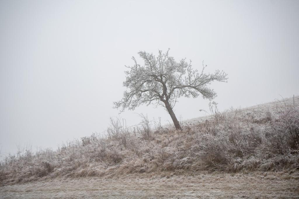 cesky-raj-zima-13