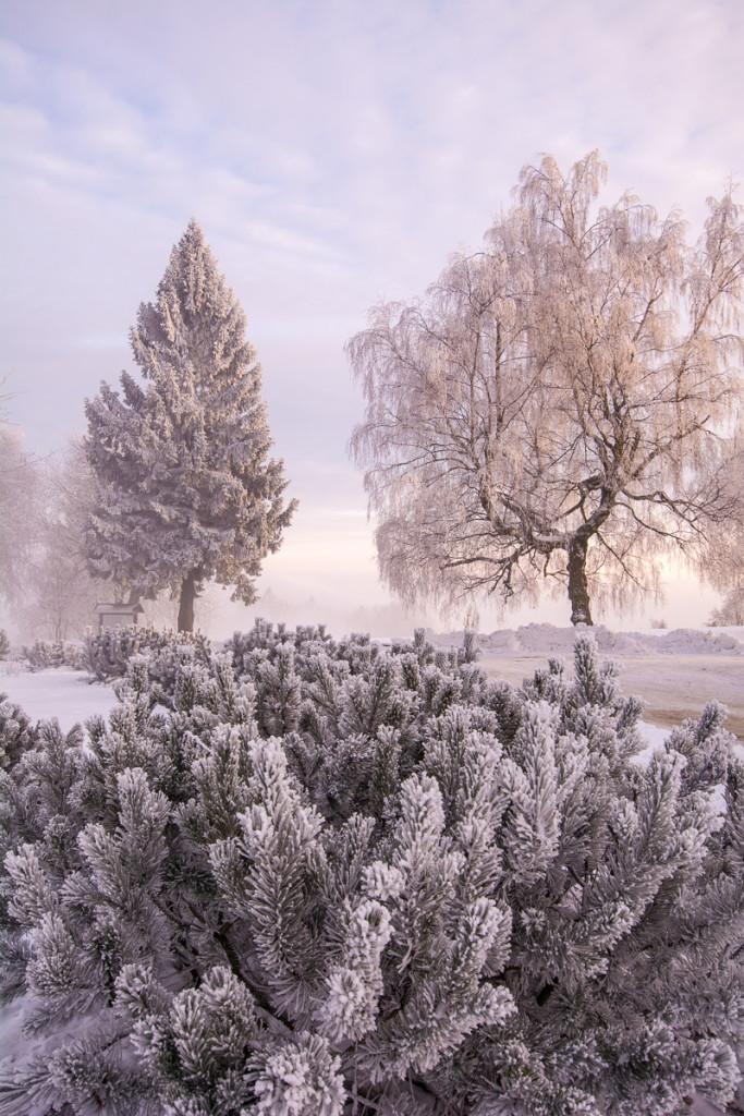 Zimní Český ráj s námrazou - Kozákov