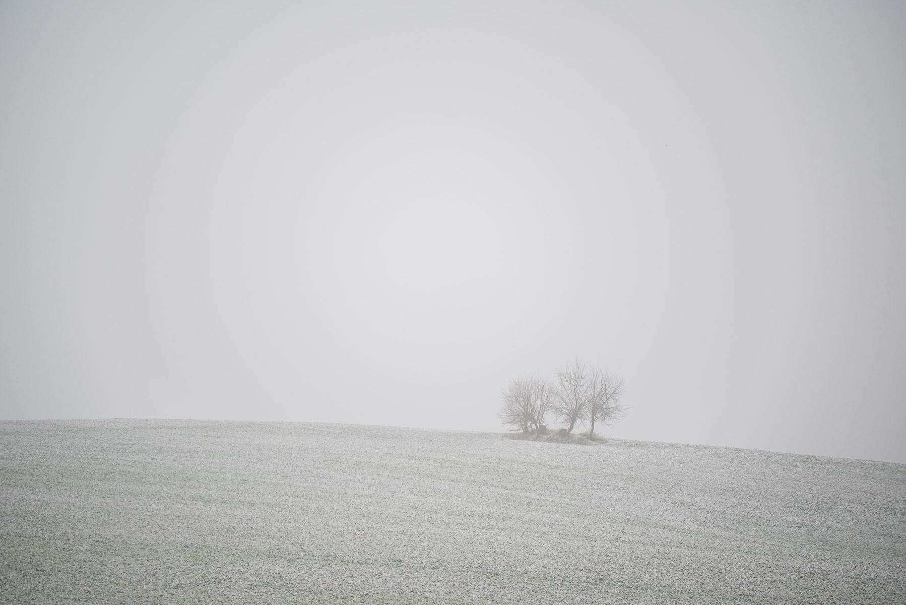 Zimní krajina (než přijde jaro)