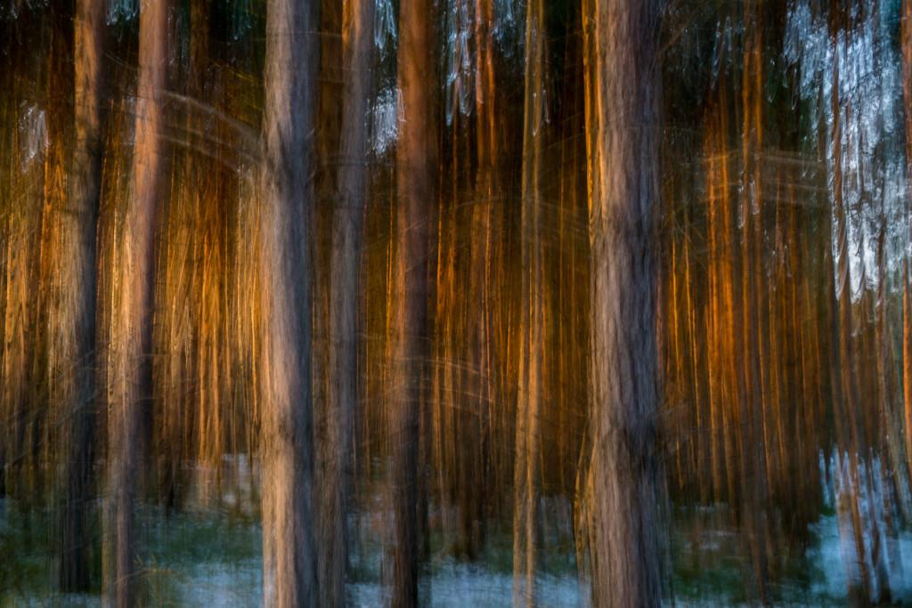 Abstrakce - malování světlem, dlouhý čas závěrky a pohybová neostrost
