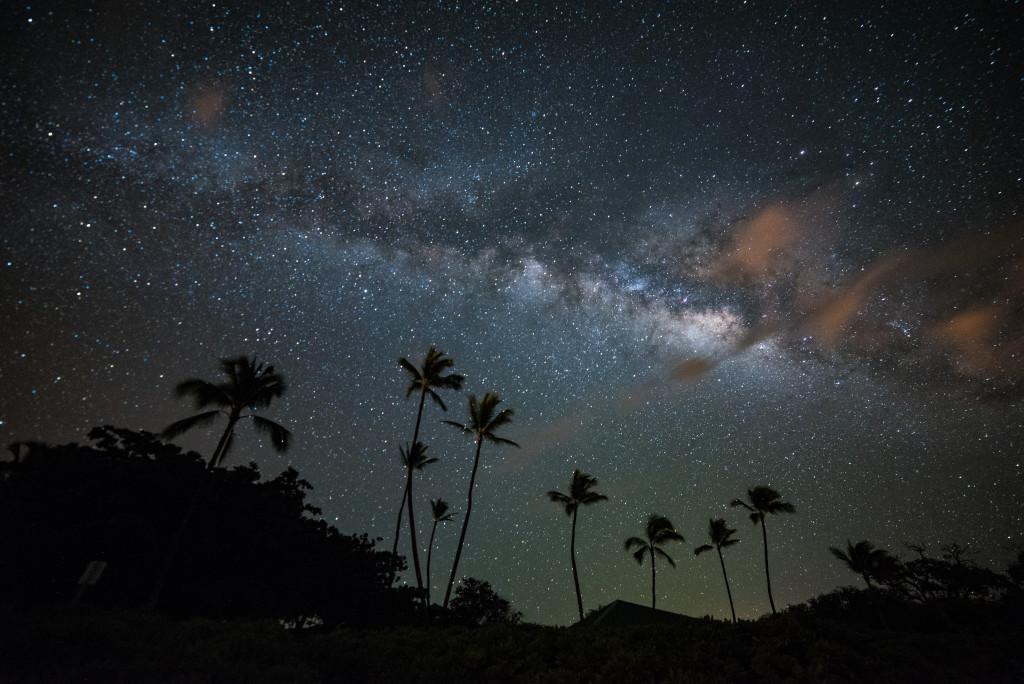 palmy, noční nebe, Havaj