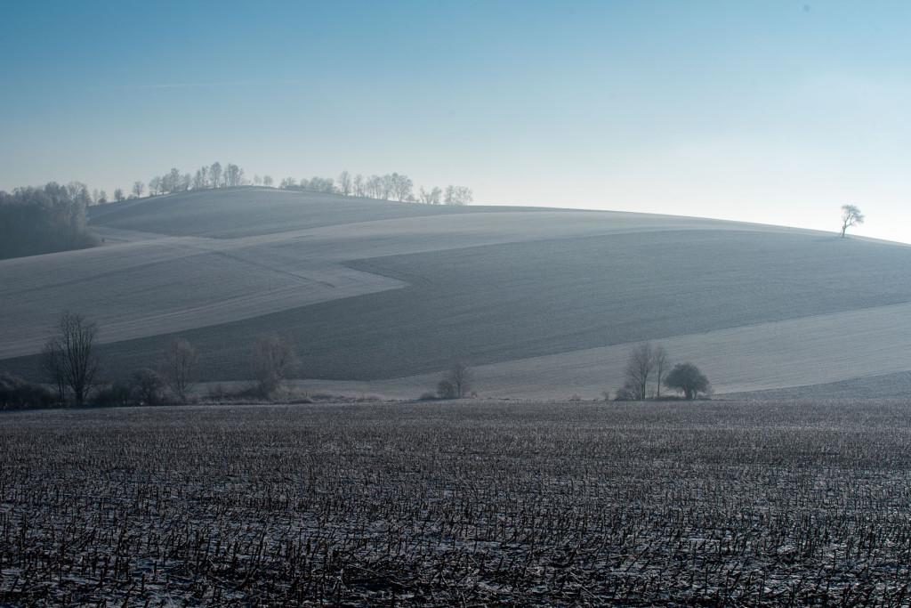 Tohle pole se dalo nafotit na několik způsobů - kdybych nepospíchal fotit do Českého ráje, možná bych našel ještě více kompozic...