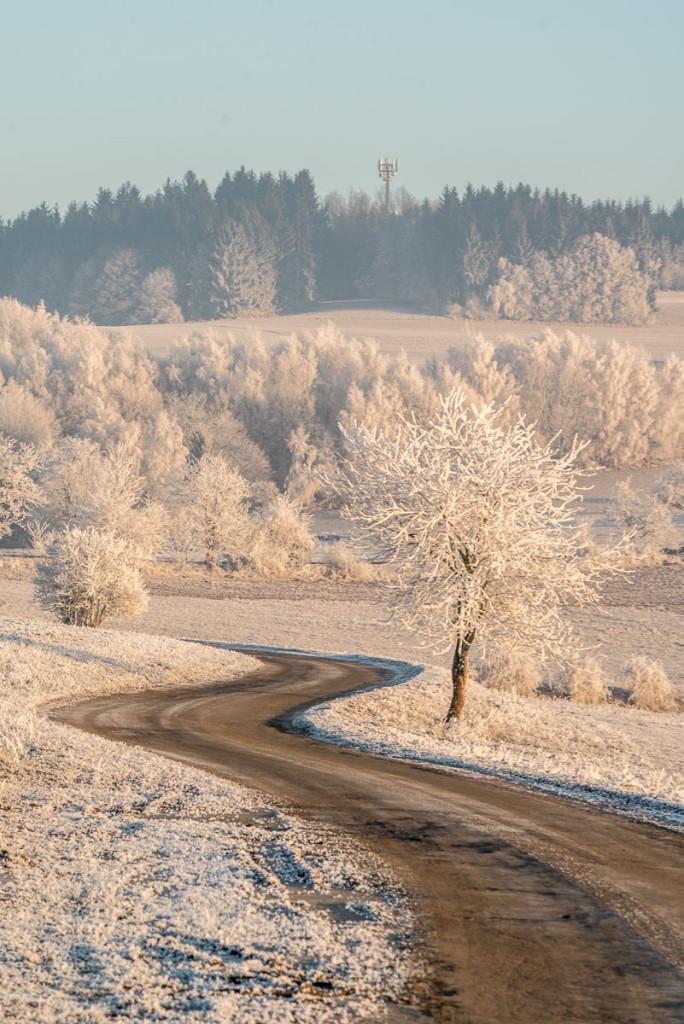 Cesta v namrzlé krajině