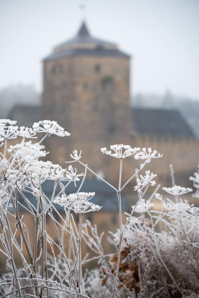 Český ráj v zimě (hrad Kost)