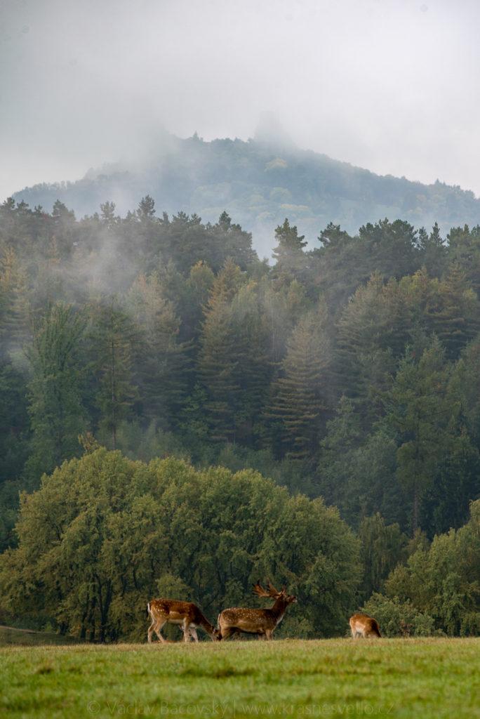 Trosky (Český raj) na podzim