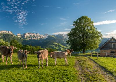 Appenzell_170611_059