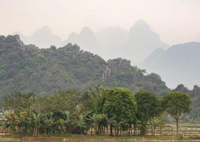 Vietnam-Pagoda_160115_098