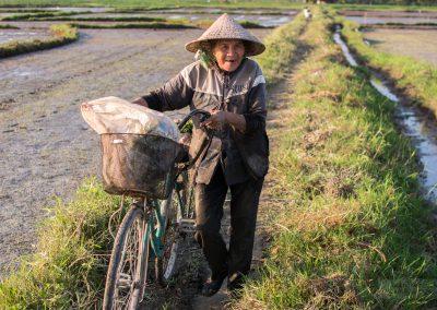 Vietnam_Hoi-An_160106_077