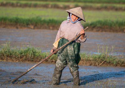 Vietnam_Hoi-An_160106_080