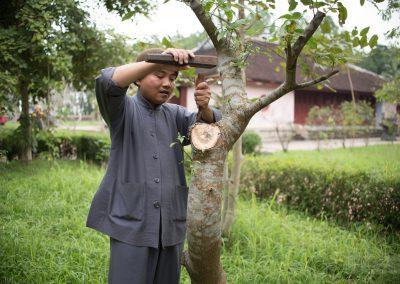 Vietnam_Hue_160105_024