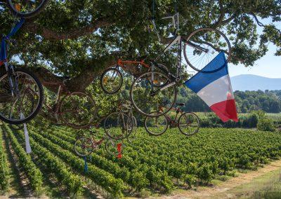 Provence_V!_130905_022