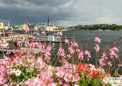 Stockholm_170714_023