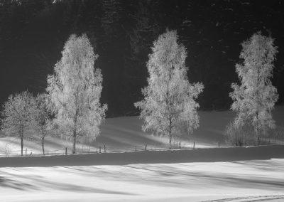 Adrspach-Broumovsko-fotogalerie-Bacovsky-36